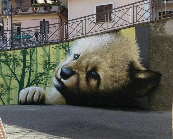 صورة Street Art