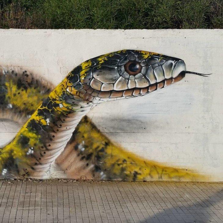 فن الشوارع