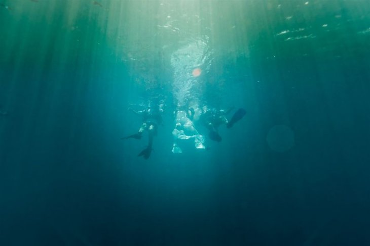 حفل زفاف تحت البحر